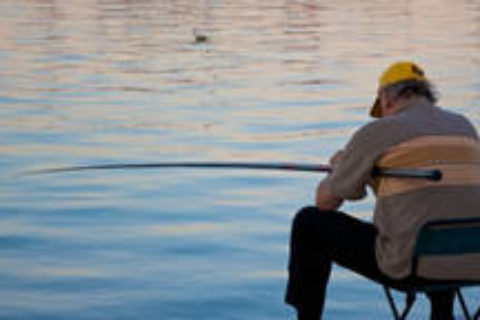 Journée pêche aux carnassiers