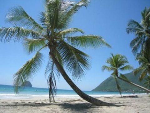 Séjour famille à la Martinique