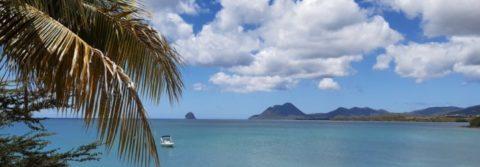 Retour sur le séjour en Martinique